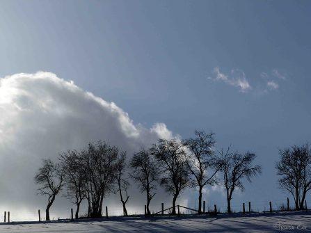 Lichtpiel in Winterkulisse