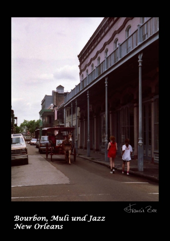 Muli mit Touristen im French Quarter