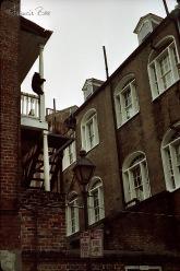 Schwarzbär klettert auf Balkon, Seitenstraße im French Quarter