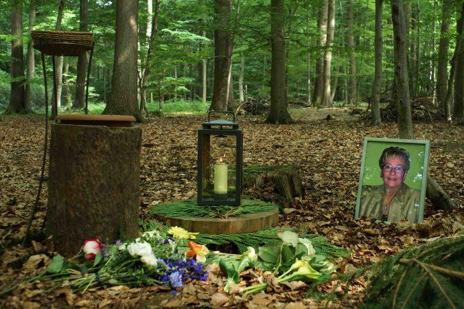 Am Urnenplatz und Baum